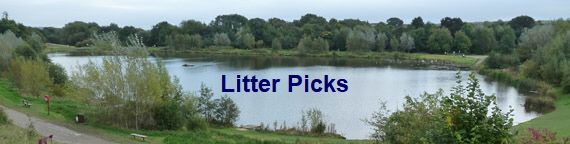 Litter Picks
